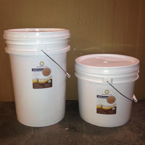 Organic einkorn berries in super-pails