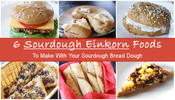 6-foods-einkorn-sourdough-bagels-foccaia-buns-pizza-crust-scones-breadsticks