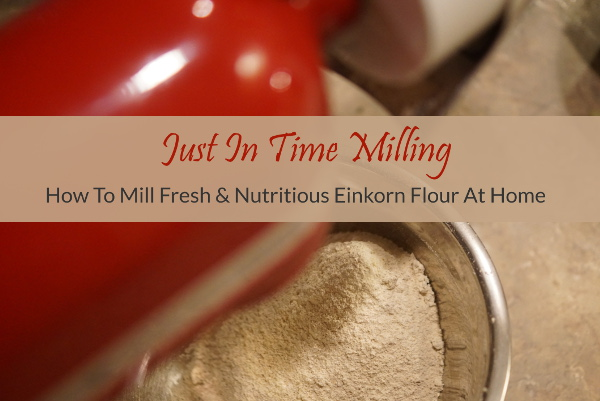 how-to-mill-einkorn-flour